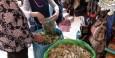 De coca bladeren worden hier op de markt in grote hoeveelheden verkocht